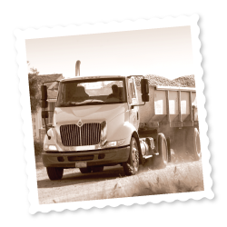 Truck hauling tomatoes